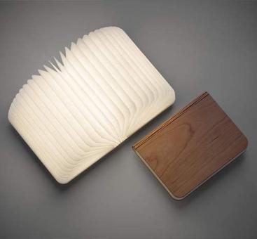 Buch-Leuchte